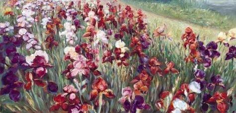 Marysia Burr RED IRISES Field of Flowers LE Art Print