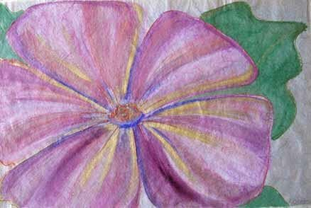 Paradise Flower By Coleman 32x40 Beautiful
