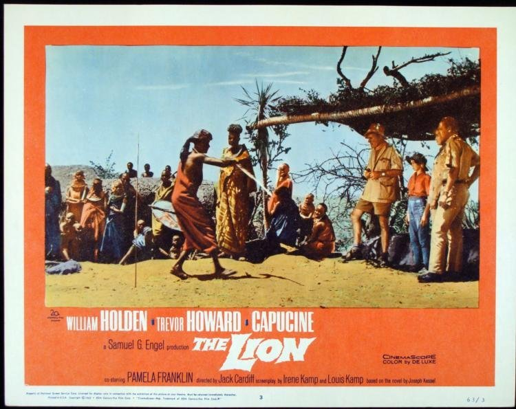 The Lion Orig Lobby Card Movie Poster w/ William Holden