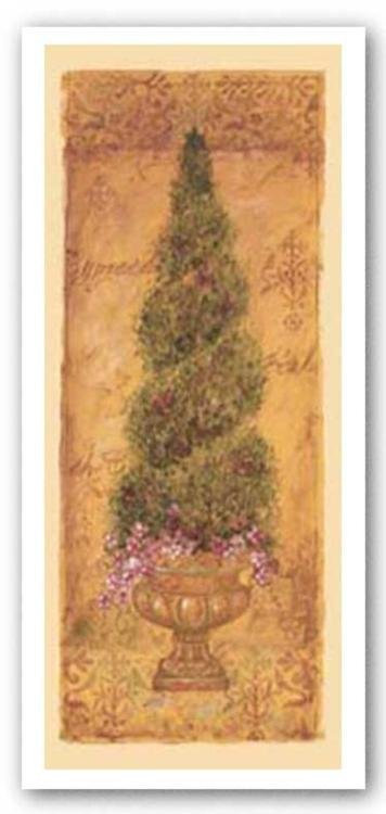 Shari White Italian Cypress Art Print