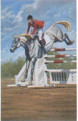 Alonzo,  Anthony : Equestrian