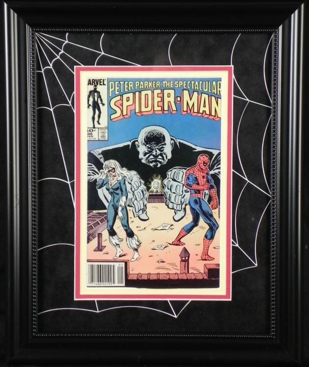 Peter Parker The Spectacular Spider-Man Framed Comic