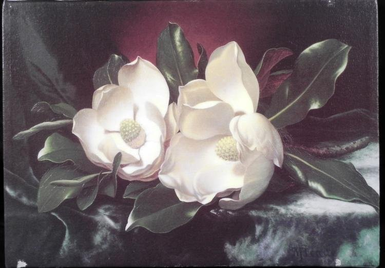 White Flowers Oil Print on Textured Canvas Art