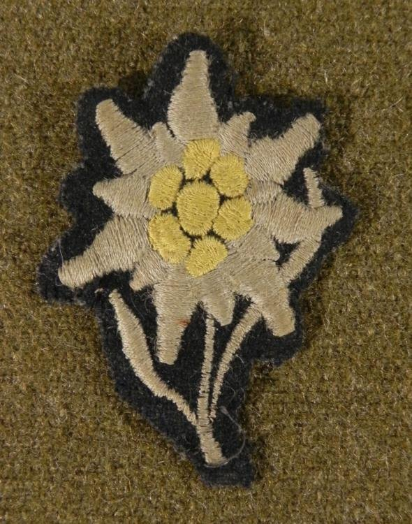 ORIG SS UNIFORM EDELWEISS MOUNTAIN TROOPS CLOTH INSIG