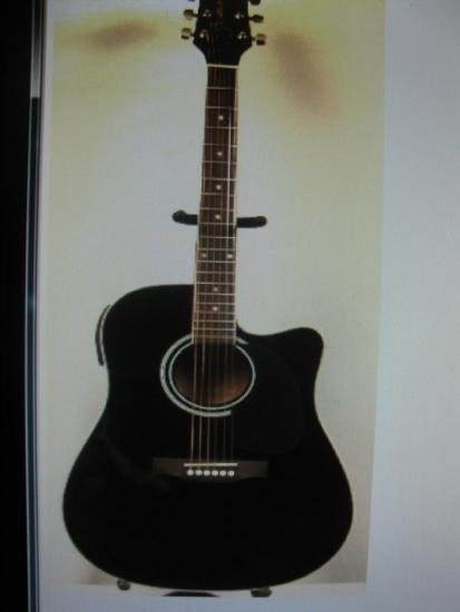 Takmine Jasmine Acoustic/Electric Guitar