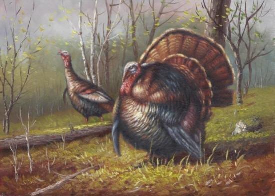 5 x 7 Oil on Board ~Turkeys in Forest~ Signed W.Ceruti