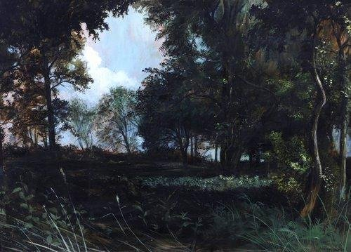 Peter Newcombe Woodland Clearing at Dusk (ET1915)