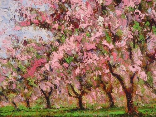 Rustic Frame CHERRY TREES IN BLOOM Sammoun Canvas Art - 2