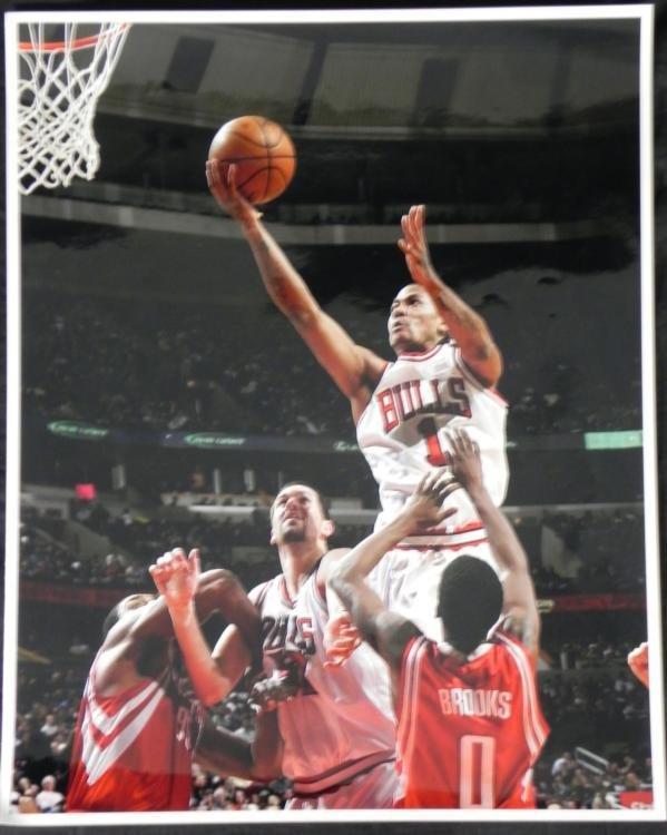 Chicago Bulls 16x20 Photo Derek Rose Rookie Brad Miller