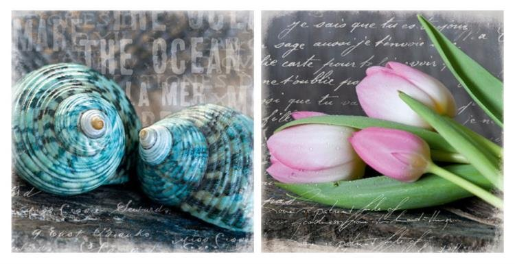 Andrea Haase Blue Ocean Shells and Poetry Tulips Print