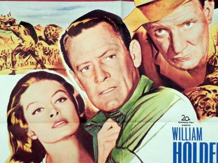 William Holden The Lion 1962 Movie Poster - 2