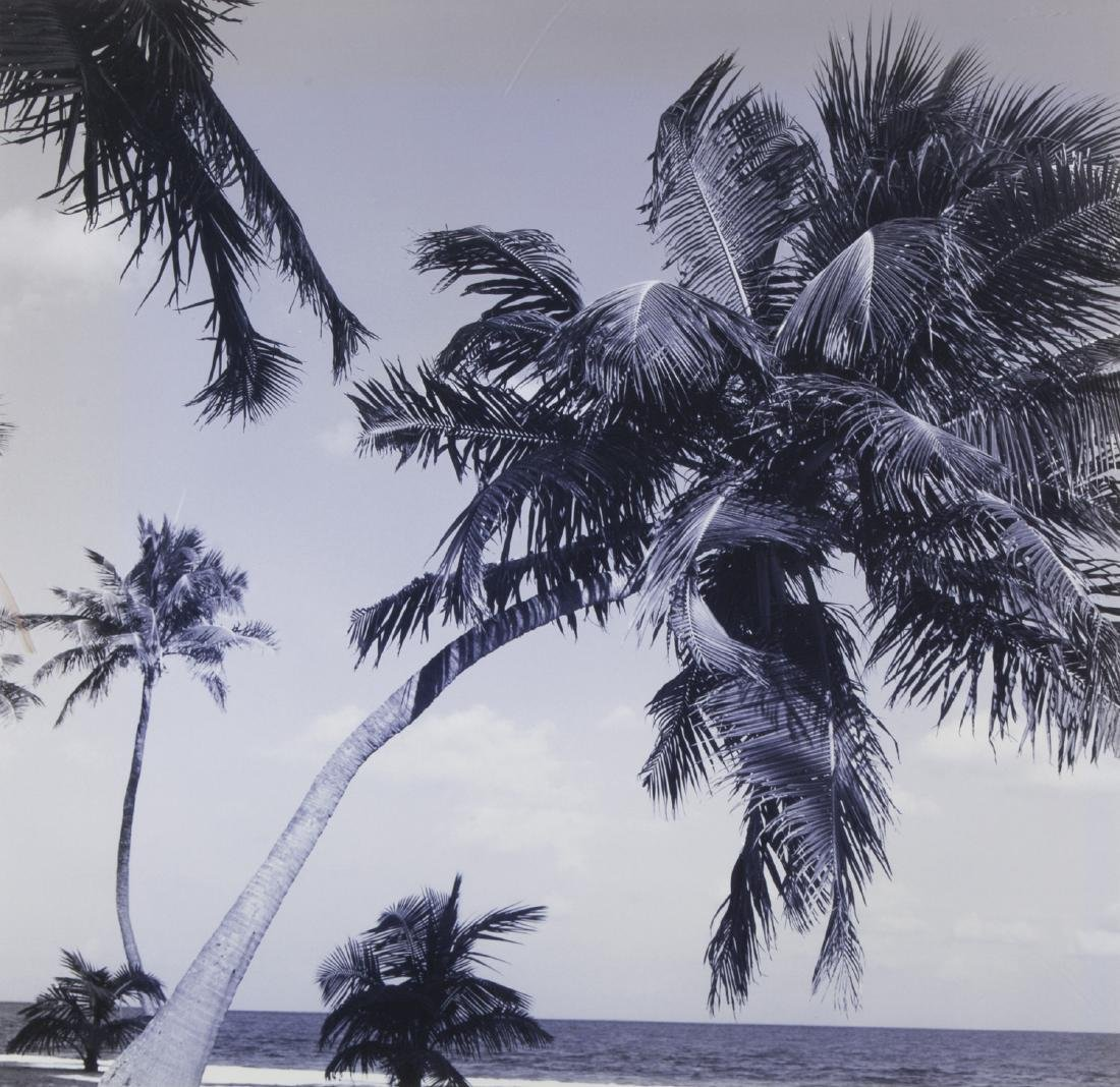 TWO ISLAND PHOTOGRAPHS