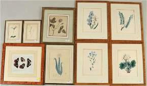 Group Nine Framed Artworks