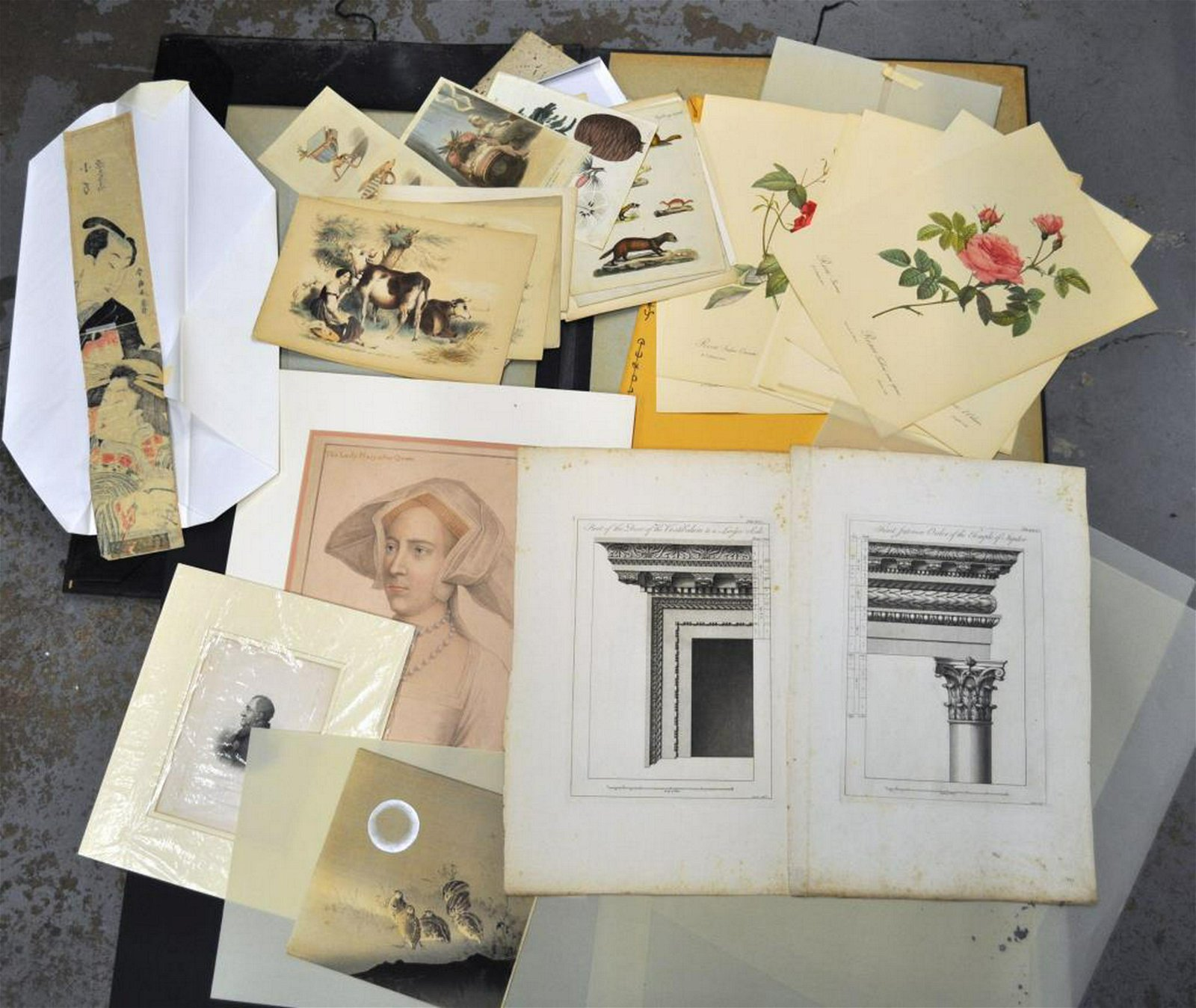 Folio Assorted Unframed Artworks