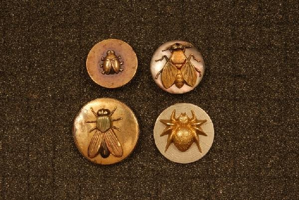 FOUR BUTTONS with INSECTS. Three medium: One black abal