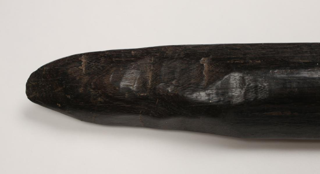 AFRICAN SPEAR - 3