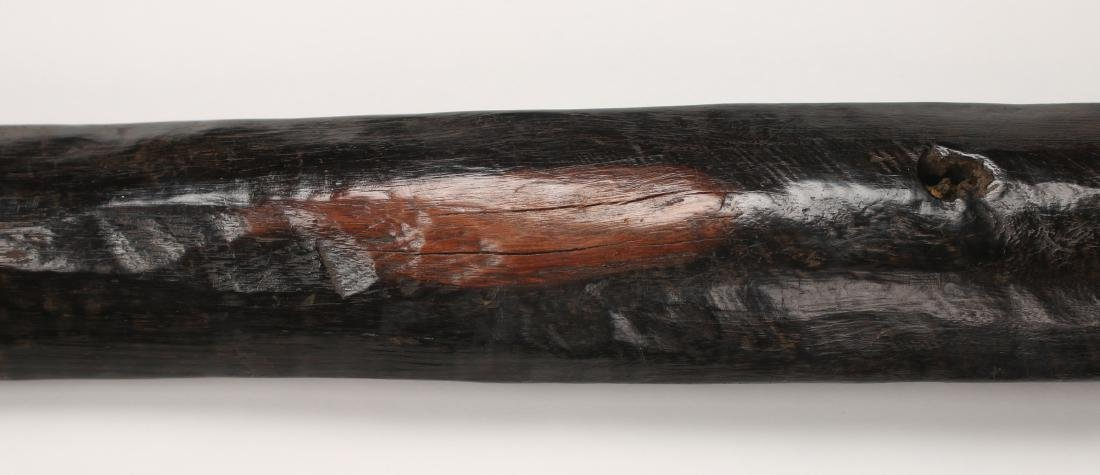 AFRICAN SPEAR - 5