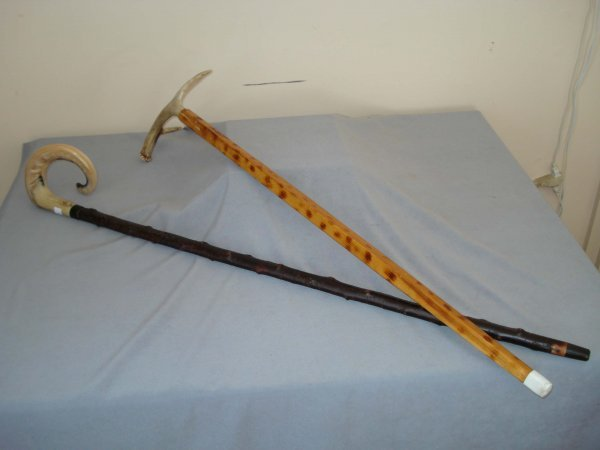 19: Two horn topped walking sticks