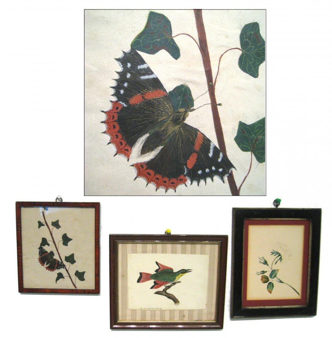 Three Botanical Watercolor Paintings