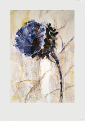 Rohlfs Artichoke Flower Poster