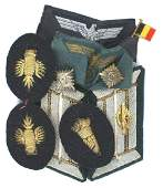 German WWII military insignia Panzer Army