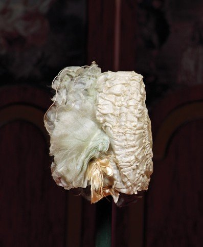 """91: ANTIQUE IVORY SILK BONNET FOR SMALL BEBE.  2 ½"""" ins"""