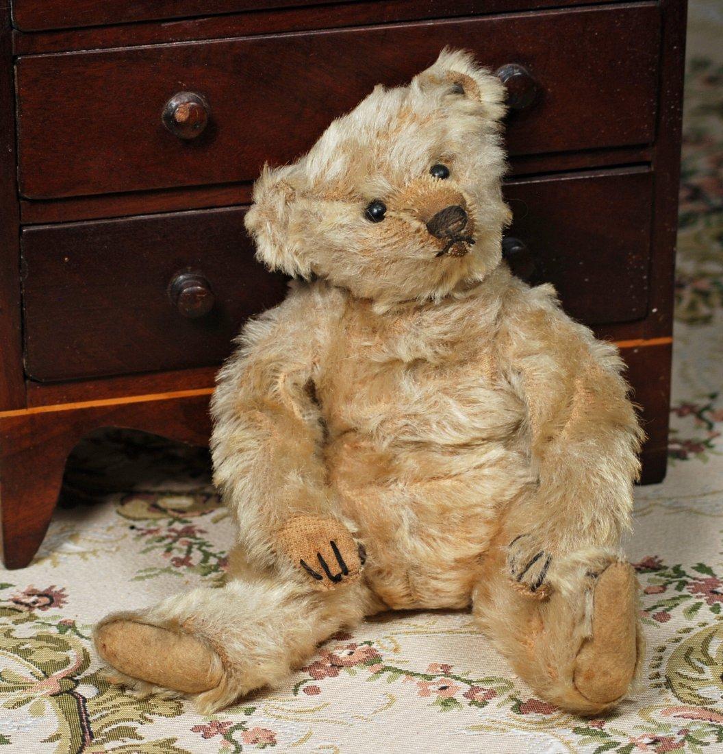 EARLY STEIFF TEDDY BEAR WITH BLANK EAR BUTTON - 2