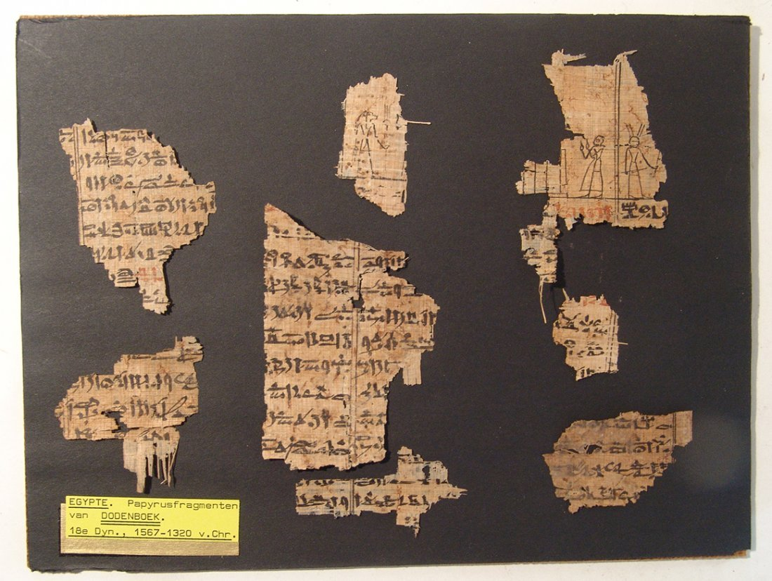 Great set of 8 Book of the Dead papyrus fragments