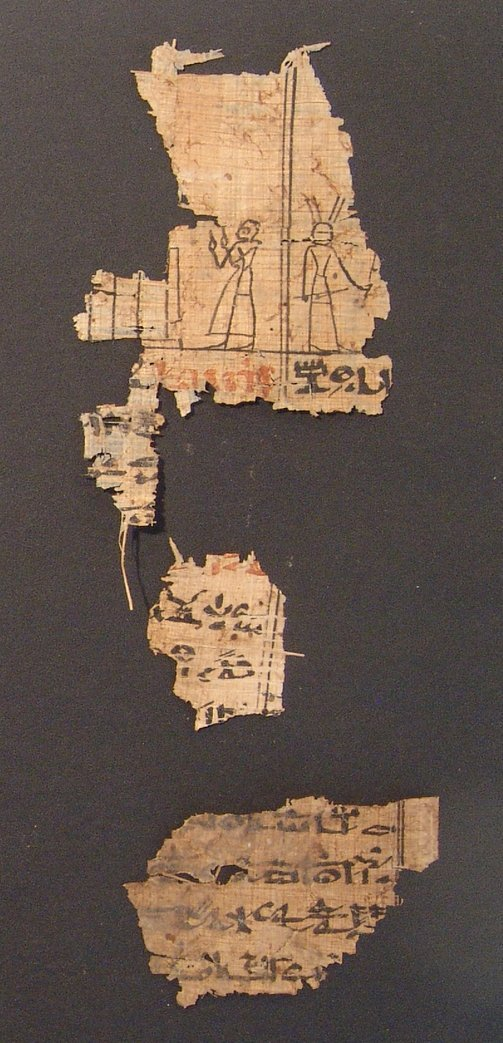 Great set of 8 Book of the Dead papyrus fragments - 2