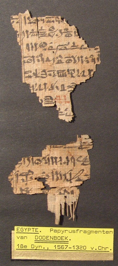 Great set of 8 Book of the Dead papyrus fragments - 4