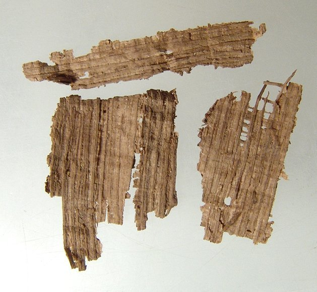 A group of 4 ancient Egyptian papyrus fragments - 2