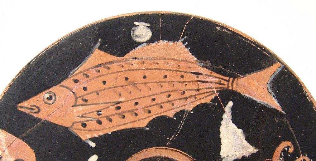 A fantastic Greek red-figure fish plate, Campania - 4