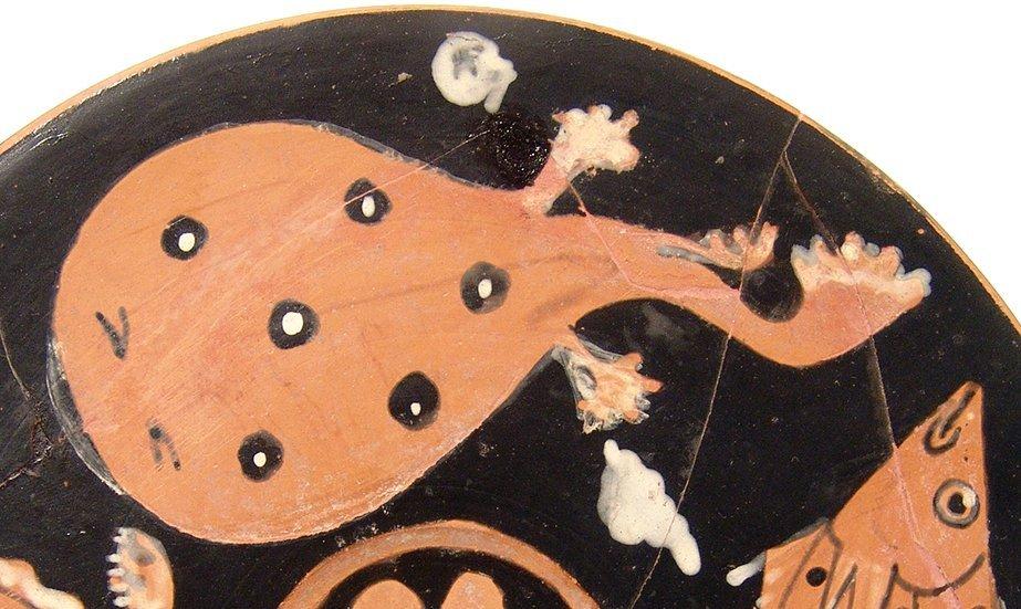 A fantastic Greek red-figure fish plate, Campania - 6
