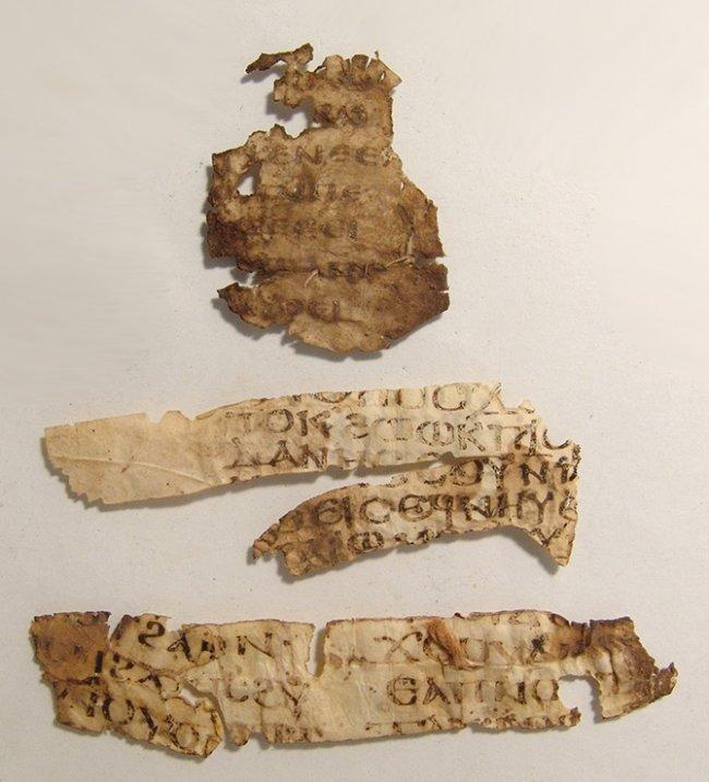 Important Coptic Biblical vellum fragment of Galatians - 2