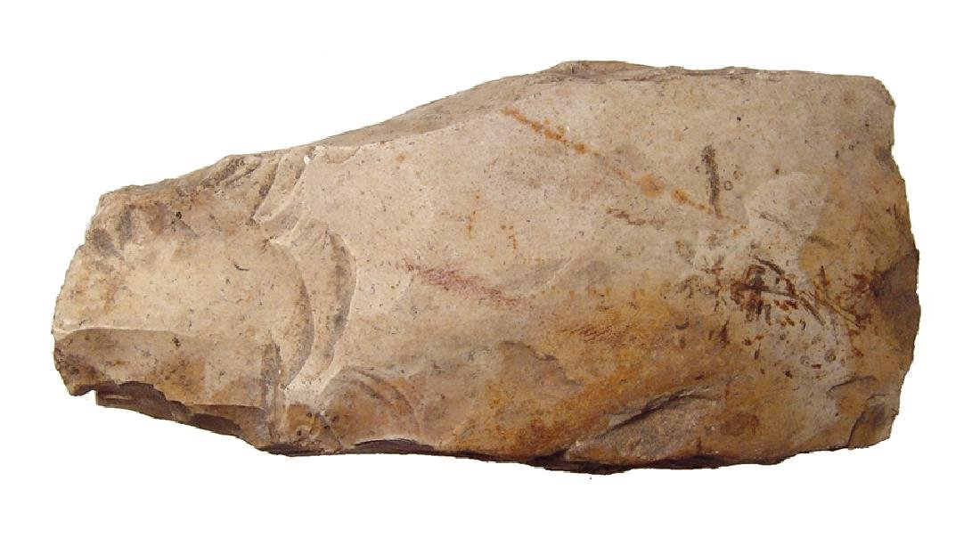 A Northern European Neolithic stone axe