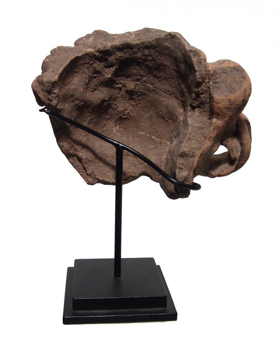 A gorgeous Mayan ceramic head fragment - 4