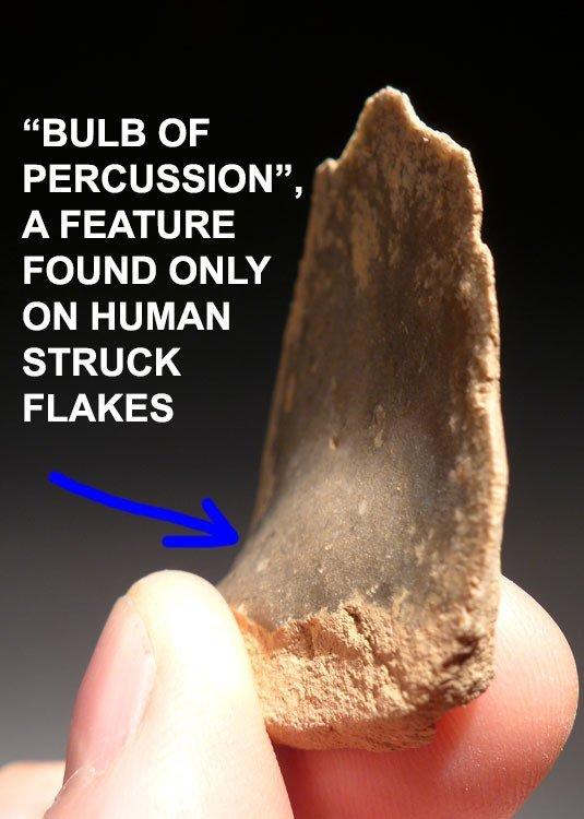 Mousterian Neanderthal discoidal flint scraper tool - 7