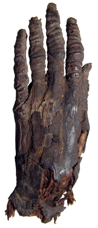 112: Egyptian mummified hand and forearm