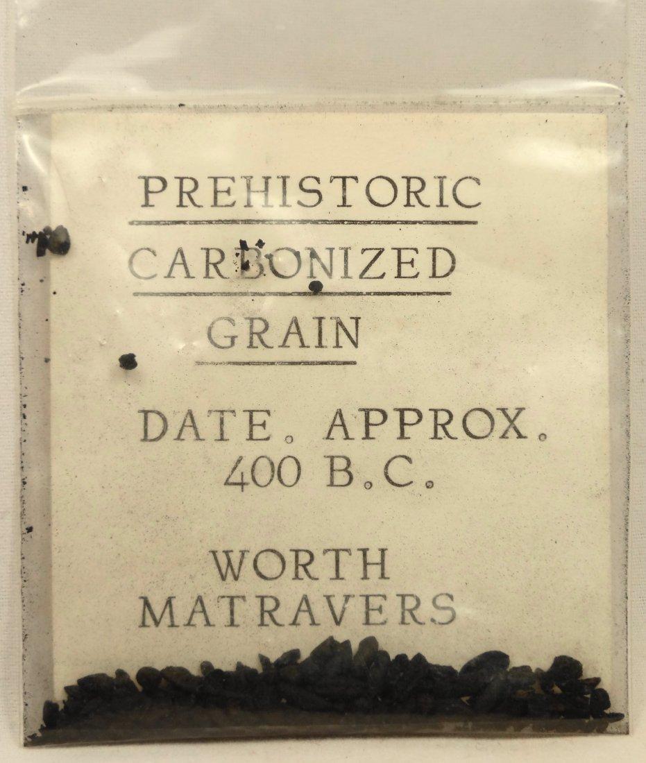 Prehistoric Carbonized Grain, c. 400 BC