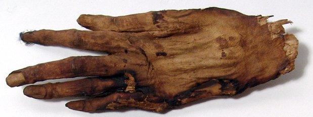 Mummified hand of 'Cleopatra'