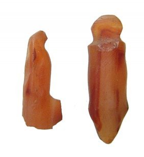 Egyptian Carnelian Stone Phallic Amulets, Late Period