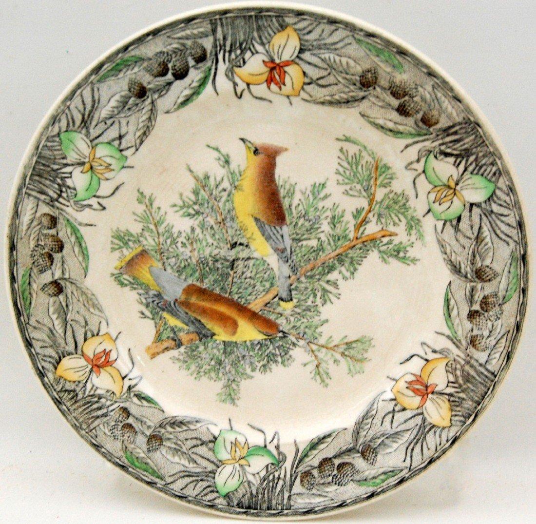 117: Plate, Audubon Birds of America, hand colored Plat