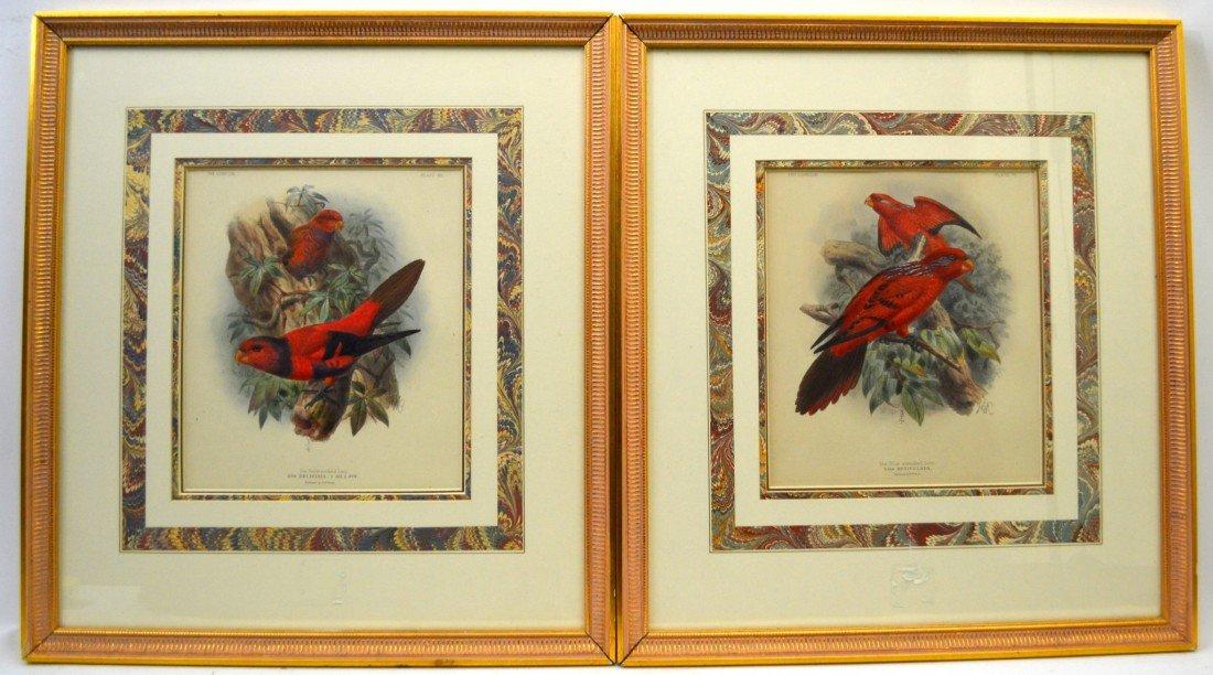 109: 2 19th Century Avian Lithographs, RH Porter