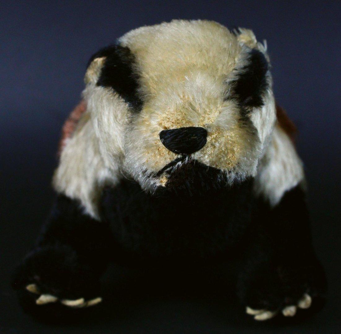 Toy, Steiff, Stuffed Badger, 20th C. - 3