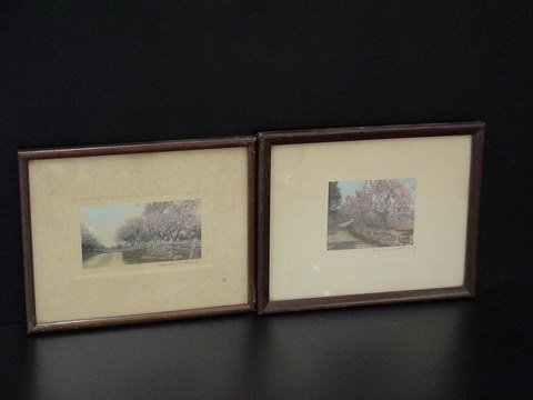 2015: Set of two lovely matted and framed hand-colored