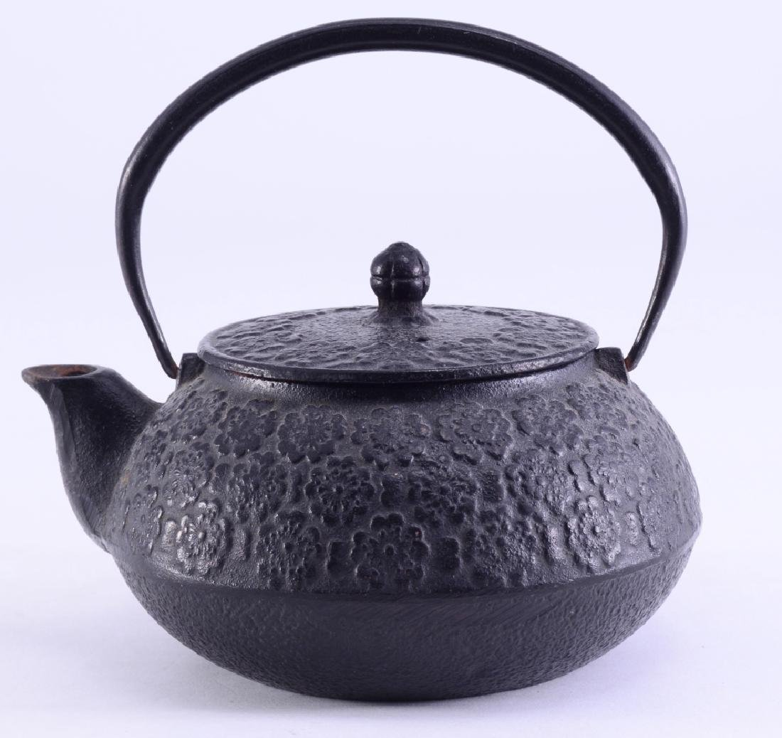 Japanese Cast Iron Pot