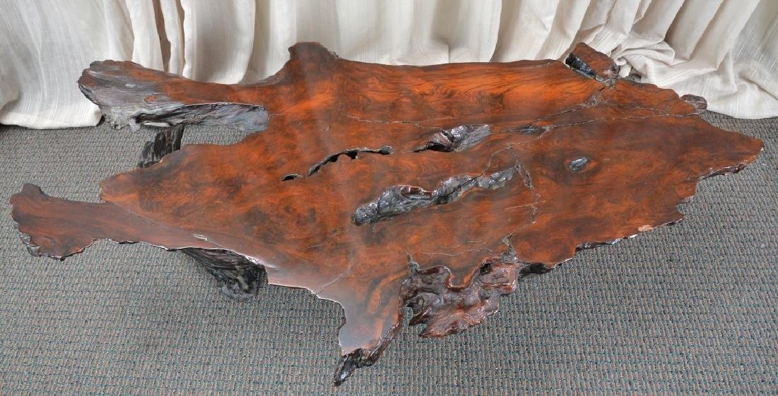 Redwood Tree Free Form Coffee Table - 5