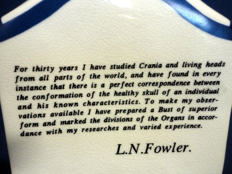 97: L.N. FOWLER PHRENOLOGY HEAD - 5