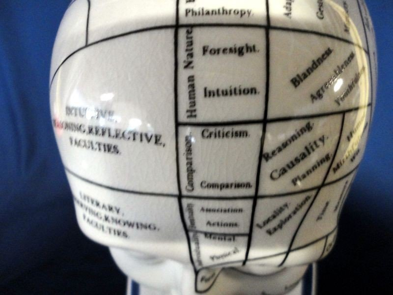 97: L.N. FOWLER PHRENOLOGY HEAD - 8