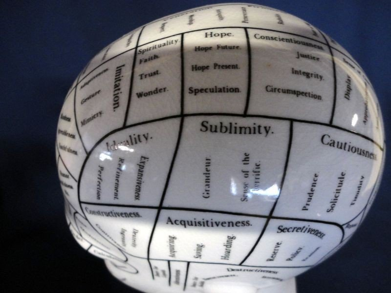 97: L.N. FOWLER PHRENOLOGY HEAD - 9